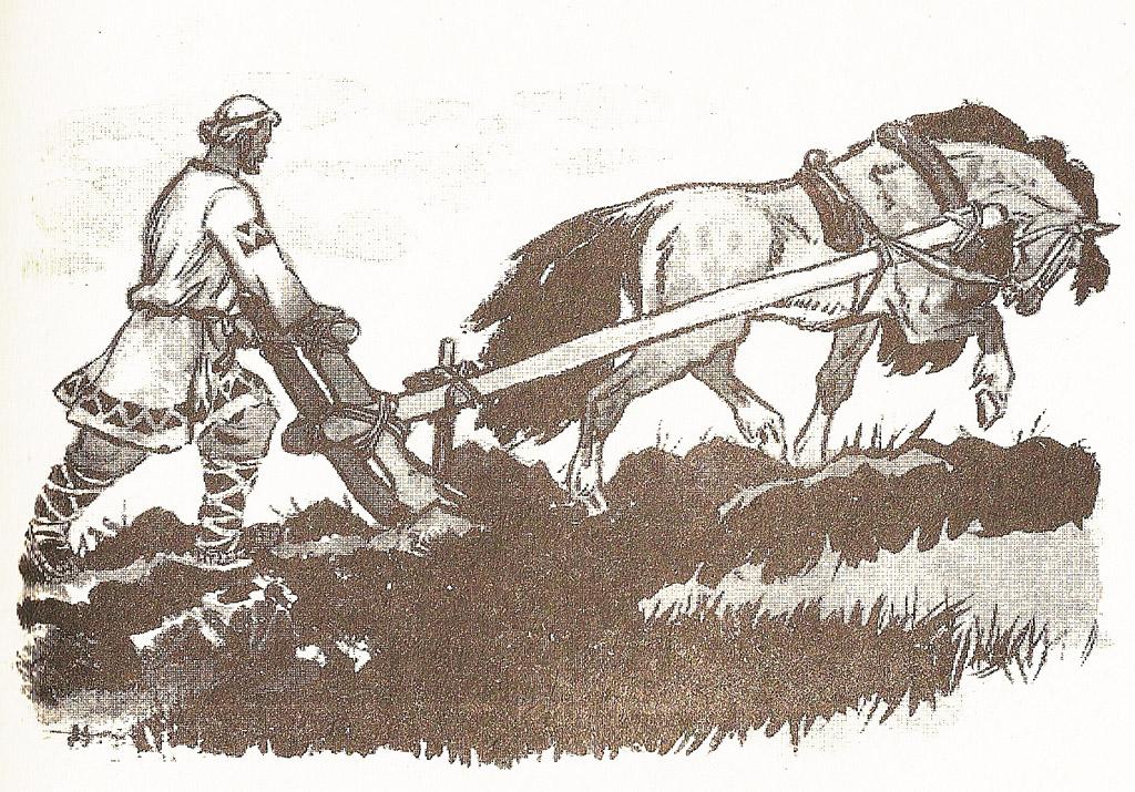 картинка лошадь пашет поле
